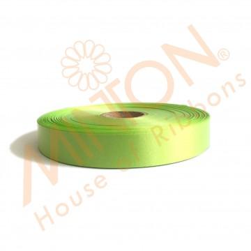 19mmx100yds Polypropylene Plastic Ribbon Apple Green